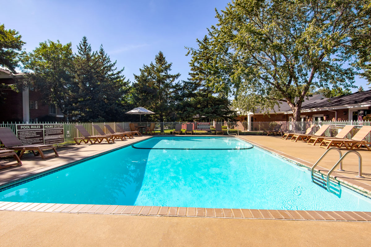 Outdoor pool with chairs and trees surrounding